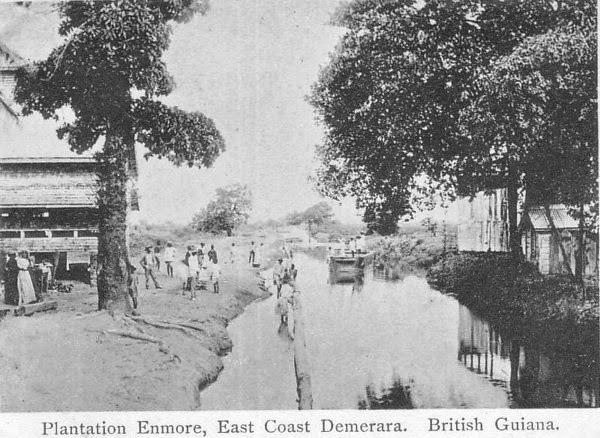 plantation-enmore