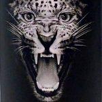"RomDeluxe R2 ""Wild Jaguar"" Enmore 17 YO - Review"
