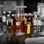Hamilton St. Lucia  2007 7 Year Old Pot Still Rum - Review